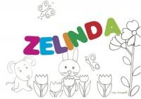 Zelinda: significato e onomastico