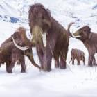 Trovato l'osso di un mammut
