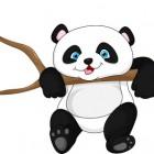 Il panda non si estingue più