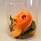 Fiori invernali d'arancia