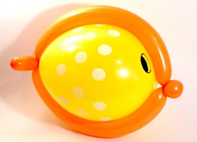 pesce con palloncini modellabili