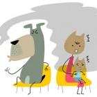 Cani e gatti vittime del fumo