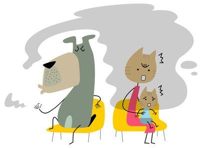 Cani e gatti_fumo