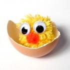 Un pulcino nell'uovo
