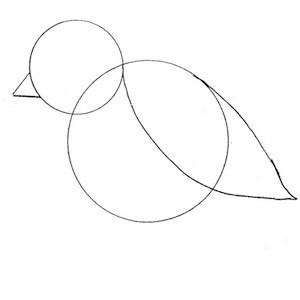 disegnare-uccello_2 sm