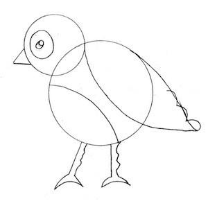disegnare-uccello_4 sm