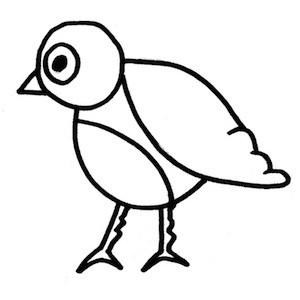 disegnare-uccello_6 sm