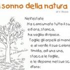 Il sonno della natura
