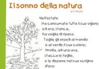 Poesie Sullautunno Per I Bambini Della Scuola Primaria E Della