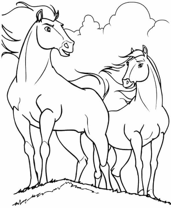 Disegni Da Colorare Di Cavalli Selvaggi.Cavalli Selvaggi Da Colorare Cose Per Crescere