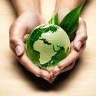 COP 23: il mondo ci riprova