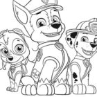 Chase, Marshal e Skye da colorare