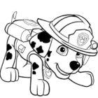 Disegno del cucciolo Marshall