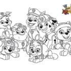 La squadra dei cuccioli da colorare