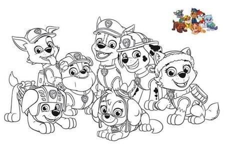 Disegno Dei Paw Patrol La Squadra Dei Cuccioli Da Stampare E Colorare