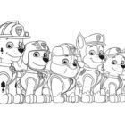La squadra Paw Patrol da colorare