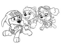 Disegni Paw Patrol La Squadra Dei Cuccioli Da Stampare E Colorare