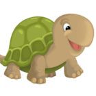 Una tartaruga in corsia