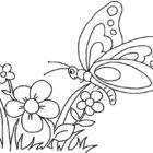 Fiore e farfalla da colorare