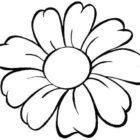 Grande fiore da colorare