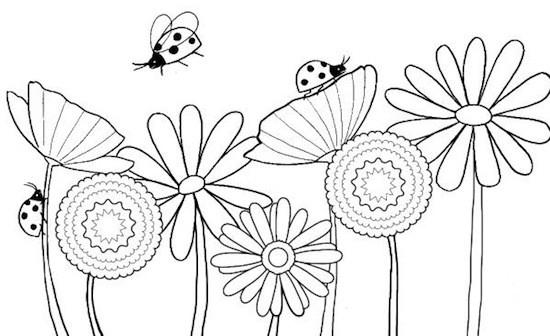 Disegni di coccinelle da colorare acolore for Fiori grandi da colorare