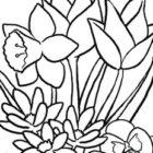 Disegno di fiori primaverili