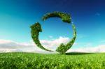 La natura ci insegna l'economia circolare