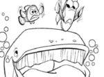 Disegno di Nemo, Dory e la balena