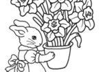Fiori e coniglietta da colorare