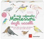 Il cofanetto degli uccelli Montessori