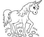 Disegno di giovane Unicorno da colorare