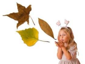 Lavoretto d'autunno foglie